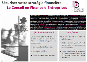 Plaquette DP Finance Consultant